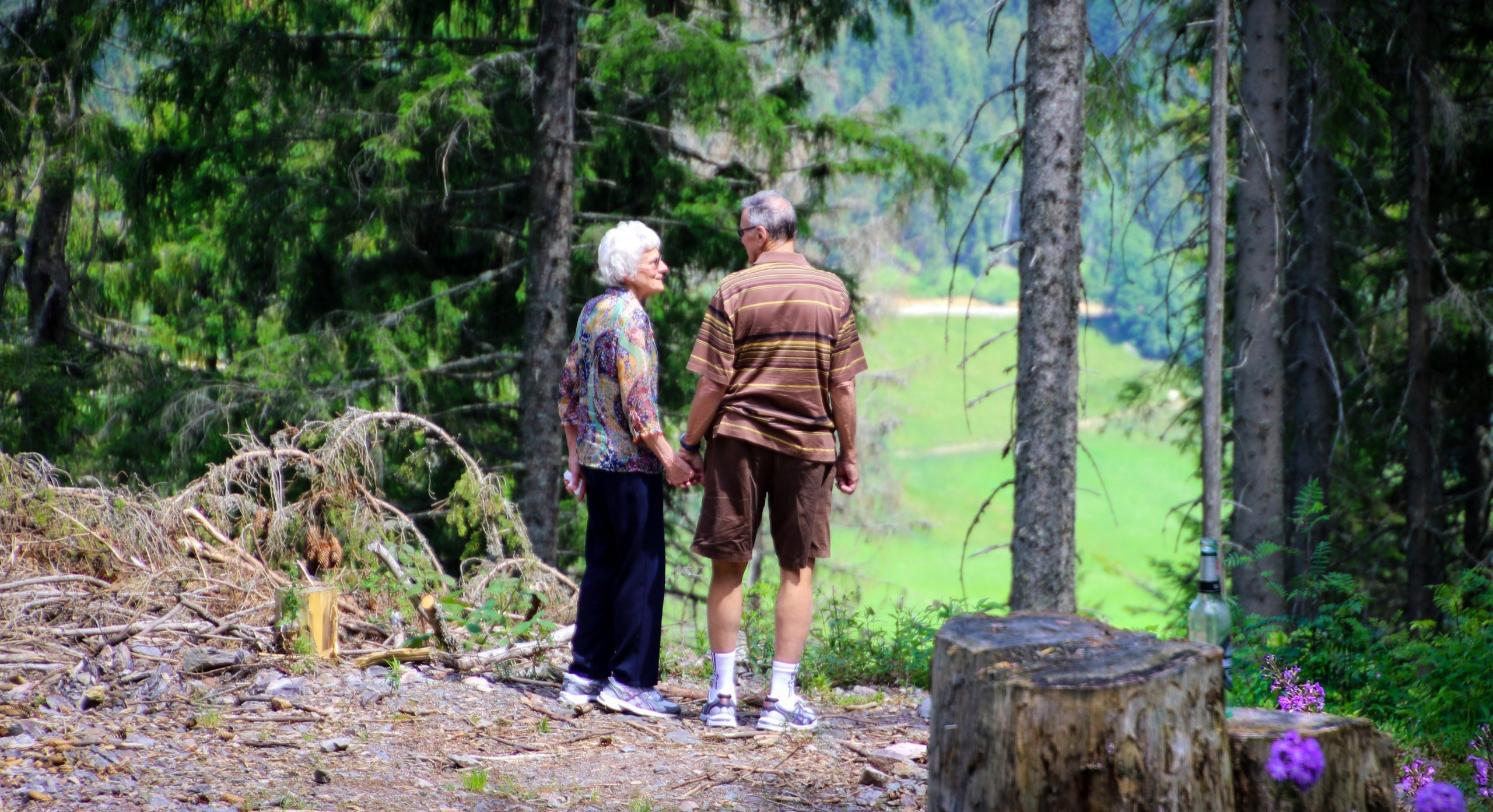 An elderly couple standing in the forest